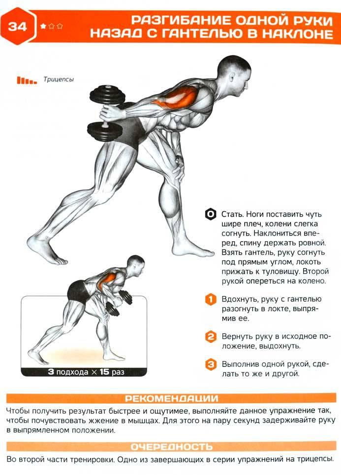 Упражнения с гантелями дома качаем бицепс, трицепс, плечи, грудь, спину и ноги в домашних условиях