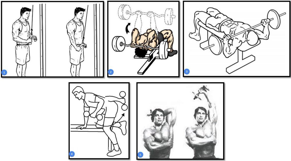 Тренировка мышц рук: супер убойная программа | бомба тело