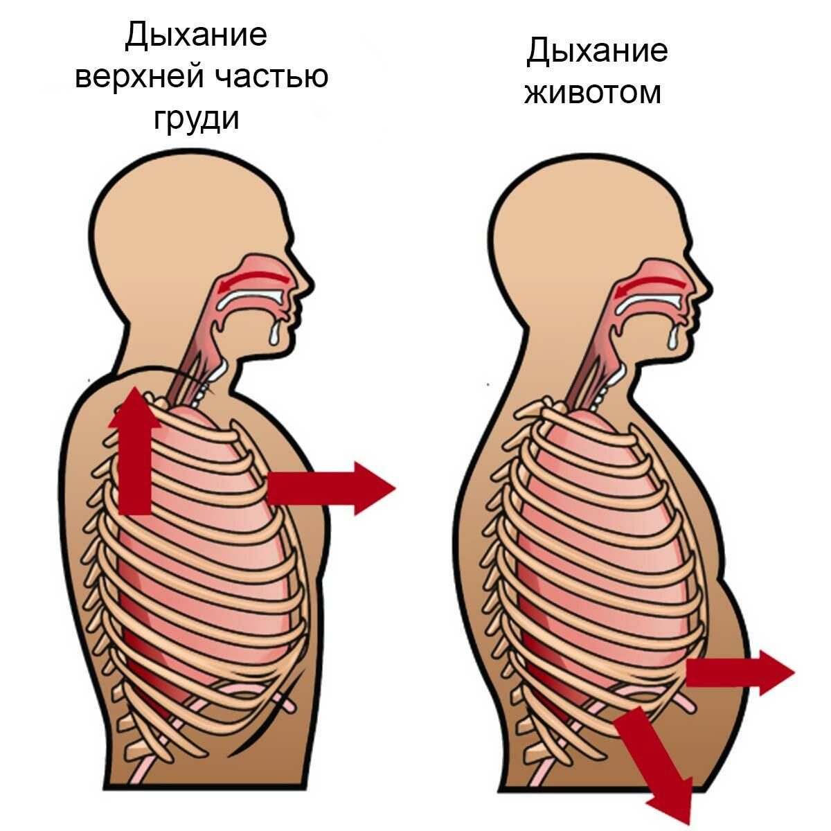 Правильное дыхание: техники для улучшения здоровья