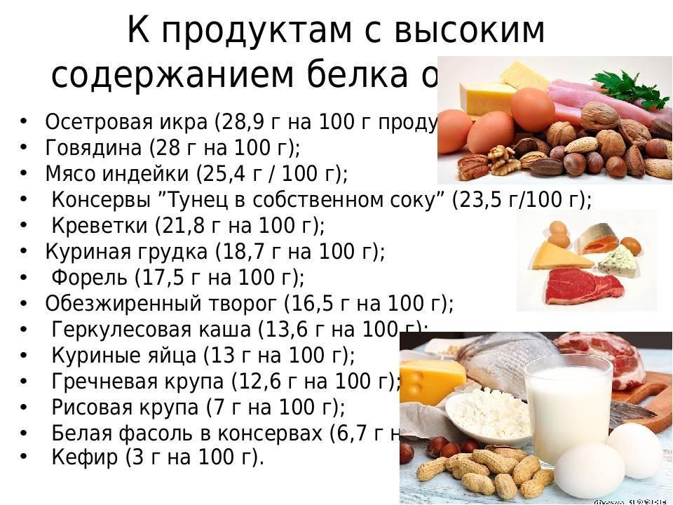 Белки в продуктах питания: таблица содержания элемента, в каком продукте его больше всего