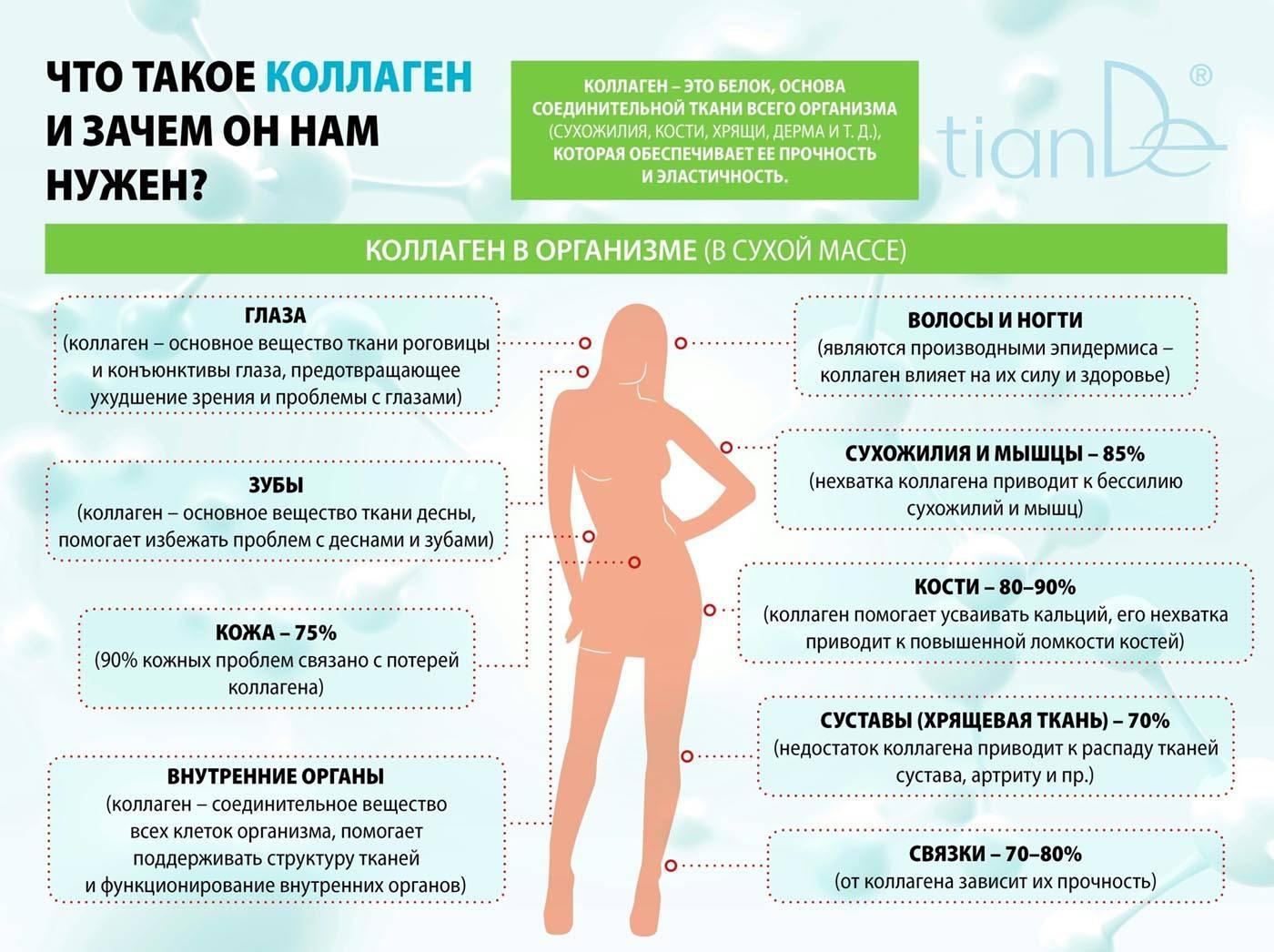 Для чего нужен коллаген и зачем его принимать: 7 полезных свойств коллагена для организма