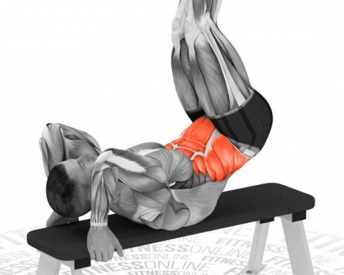 Рельефный и сухой пресс —как добиться? учимся напрягать мышцы живота