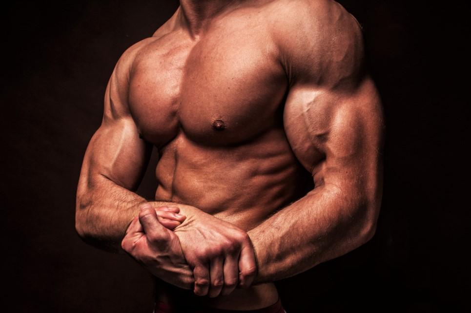 Сколько мышц у человека и какая из них самая сильная, длинная и большая | tvercult.ru