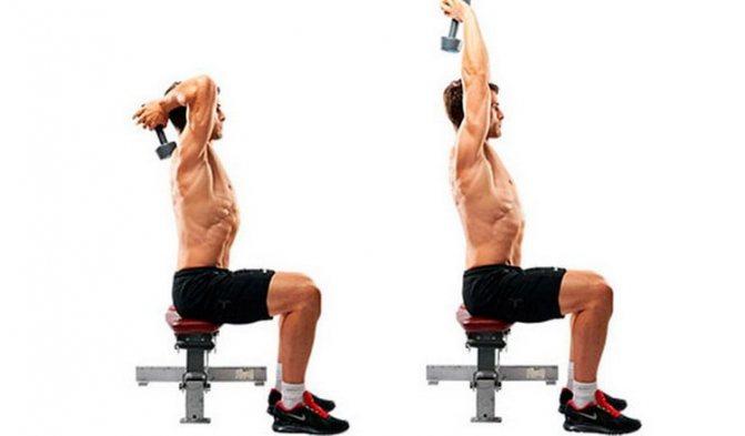 Жим гантелей сидя: техника выполнения, работающие мышцы, ошибки