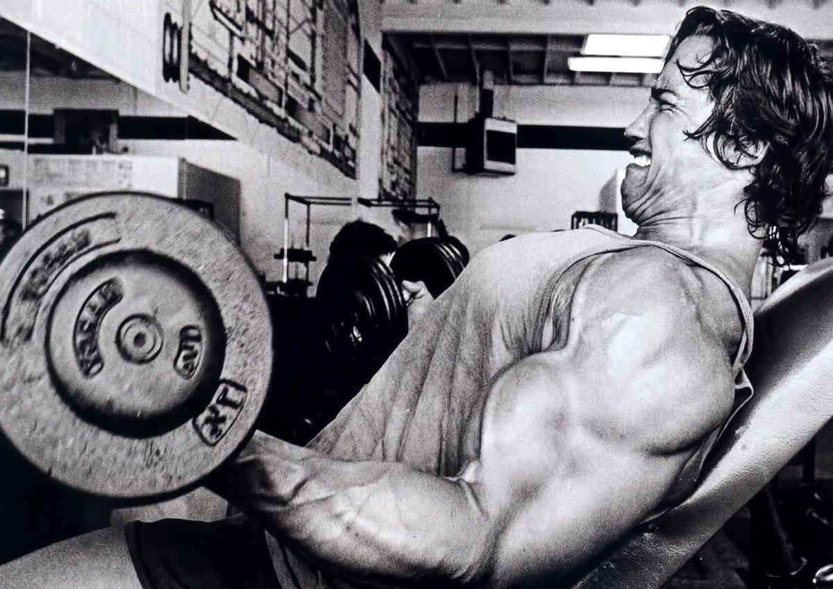 Нужен ли тренинг до отказа? » max-body