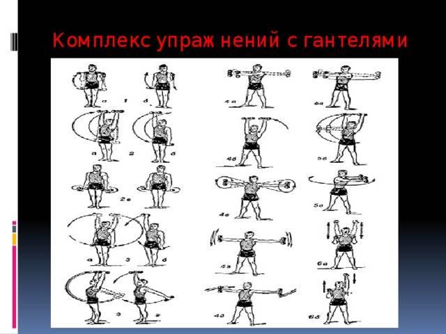 Подборка упражнений с гантелями в домашних условиях для мужчин