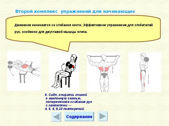 Силовая гимнастика: описание, комплекс упражнений и рекомендации
