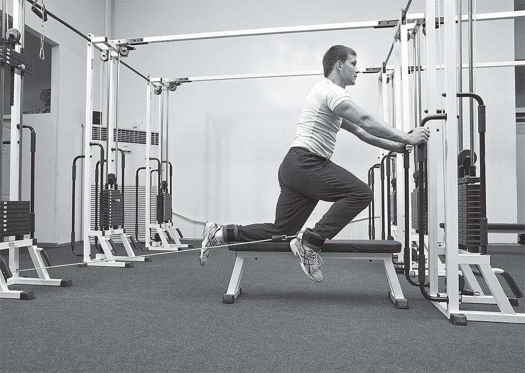 Преимущества занятий в тренажерном зале, комплексы лучших упражнений