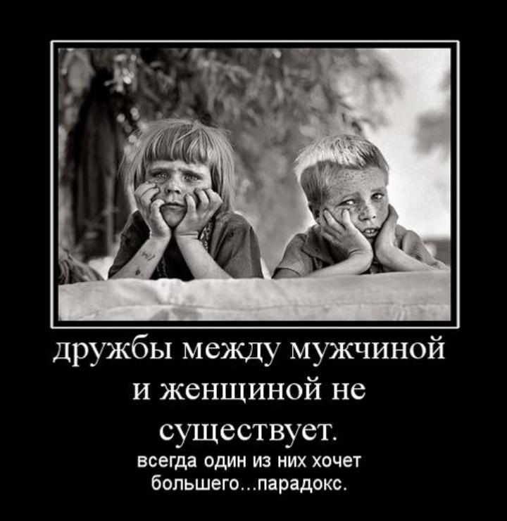 Дружба между мужчиной и женщиной — что говорит наука? - hi-news.ru