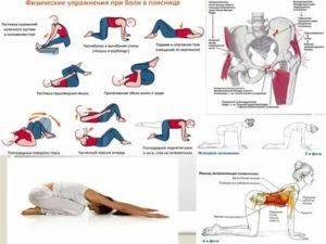 Боль в спине в области поясницы - 5 советов как избавиться от боли!