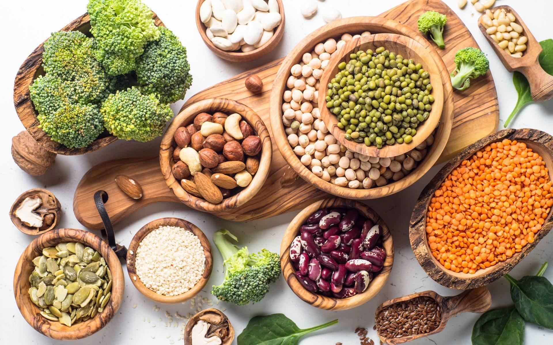 Животный и растительный белок: чем отличается (разница), какой лучше?