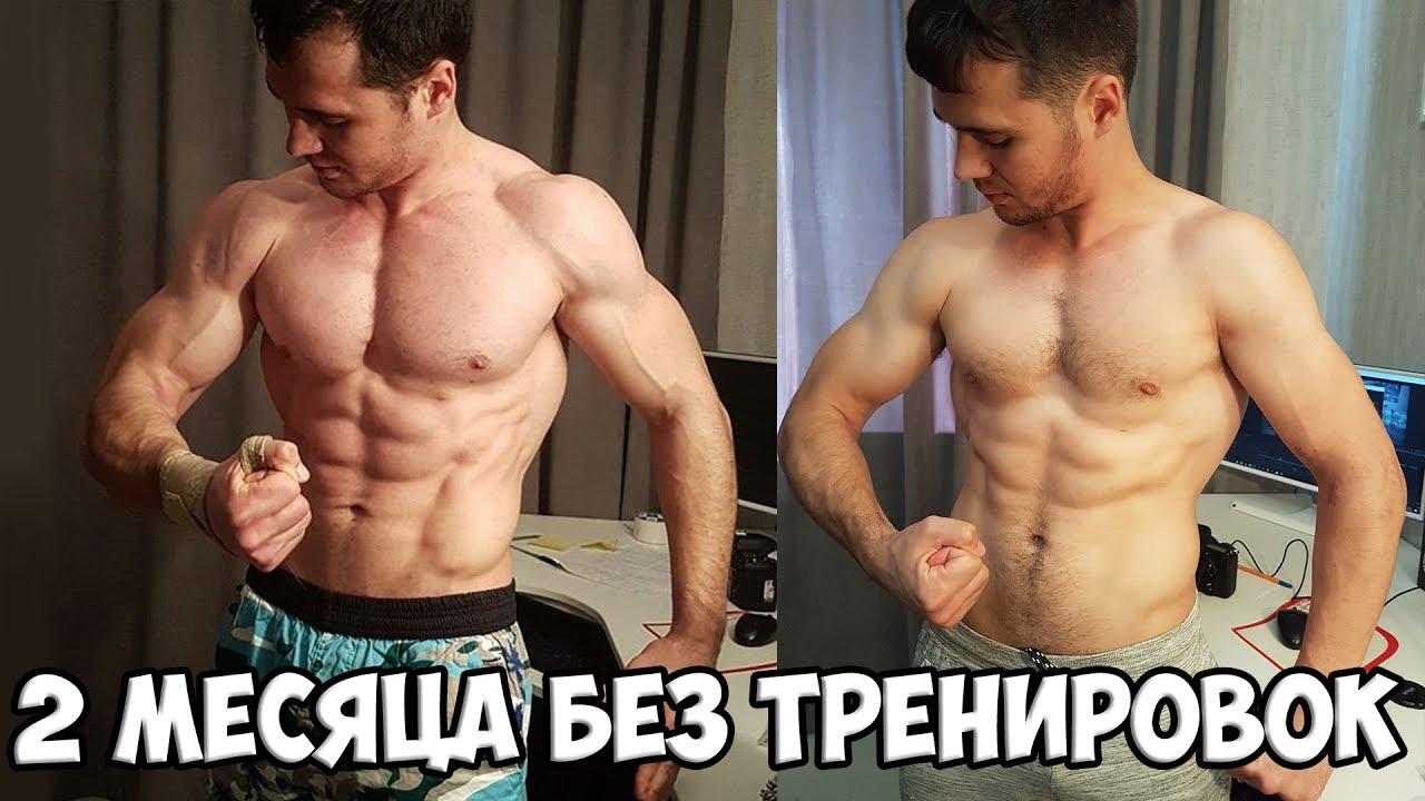 Почему мышцы без нагрузки уменьшаются в объеме?  - «как и почему»