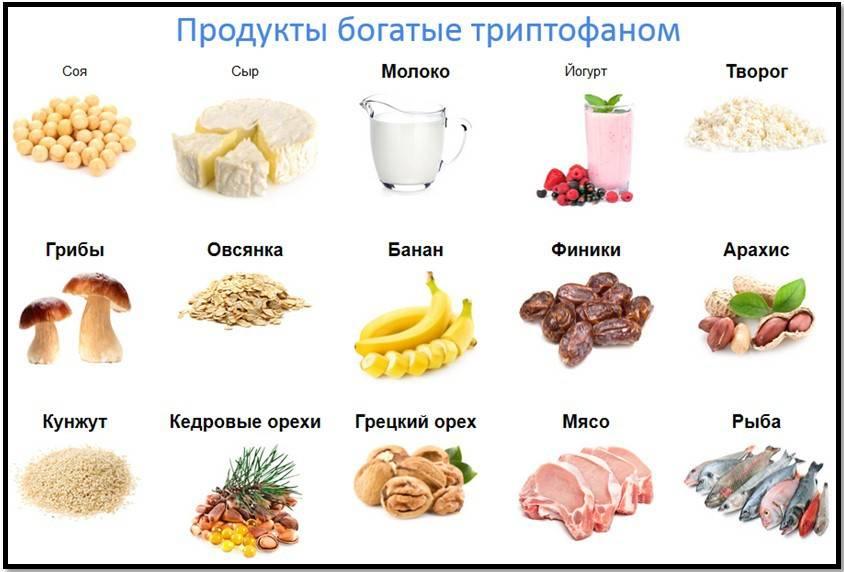 В чём польза аминокислот, для чего они нужны, как они влияют на мозг человека