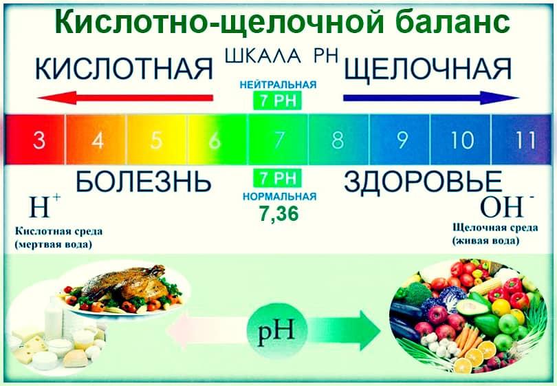 Кислотно-щелочной баланс организма и продукты для его поддержания