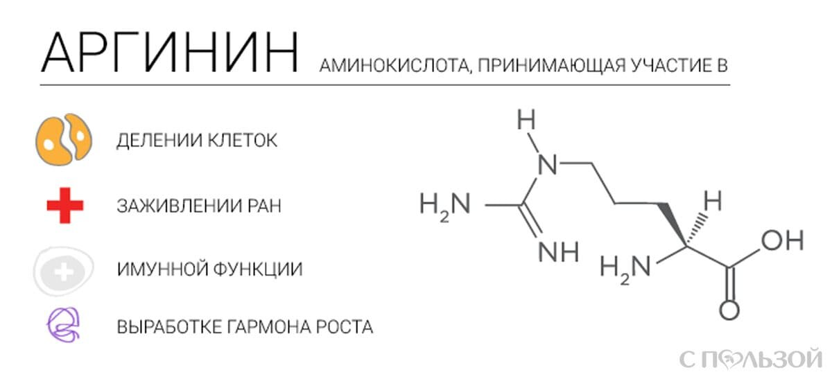 Аргинин — польза и вред для организма | польза и вред