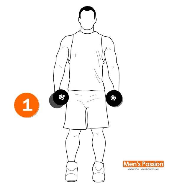 Разведение рук с гантелями стоя: фото и видео упражнения
