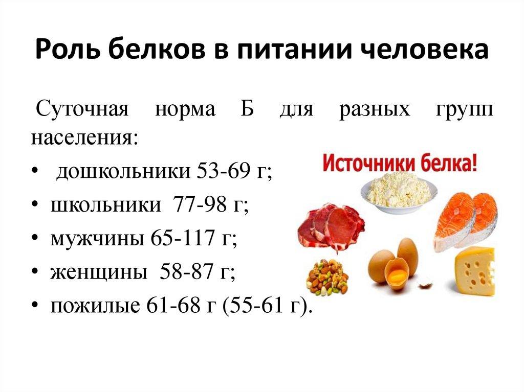Сколько усваивается белка за один прием пищи