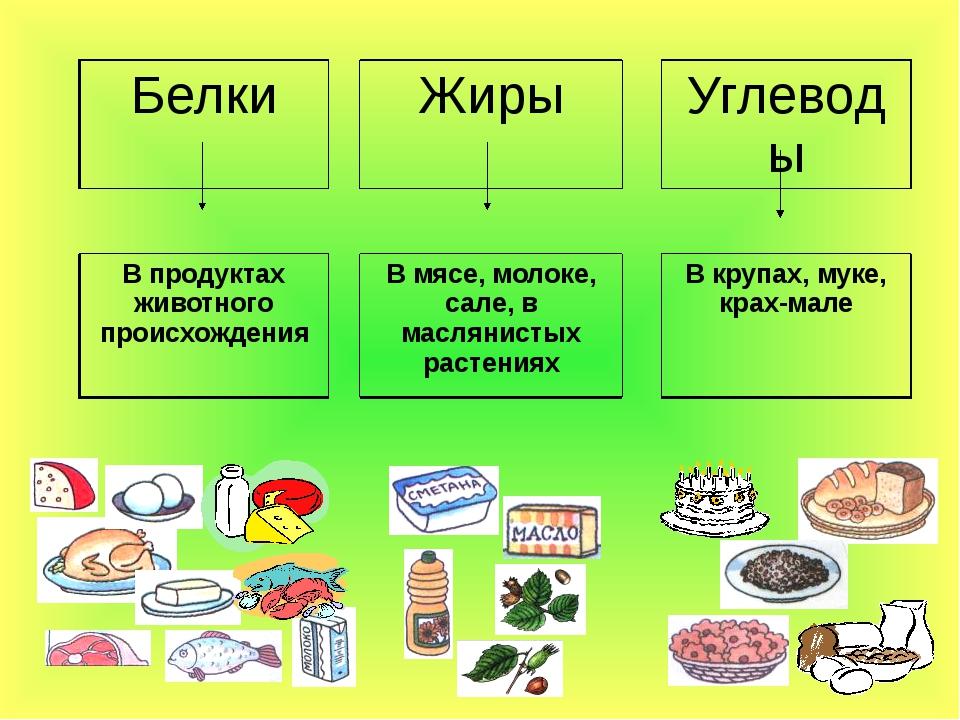 Соотношение бжу (белков, жиров и углеводов) | «табрис»