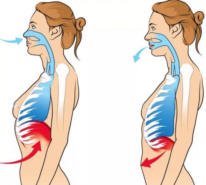 Как научиться дышать диафрагмой
