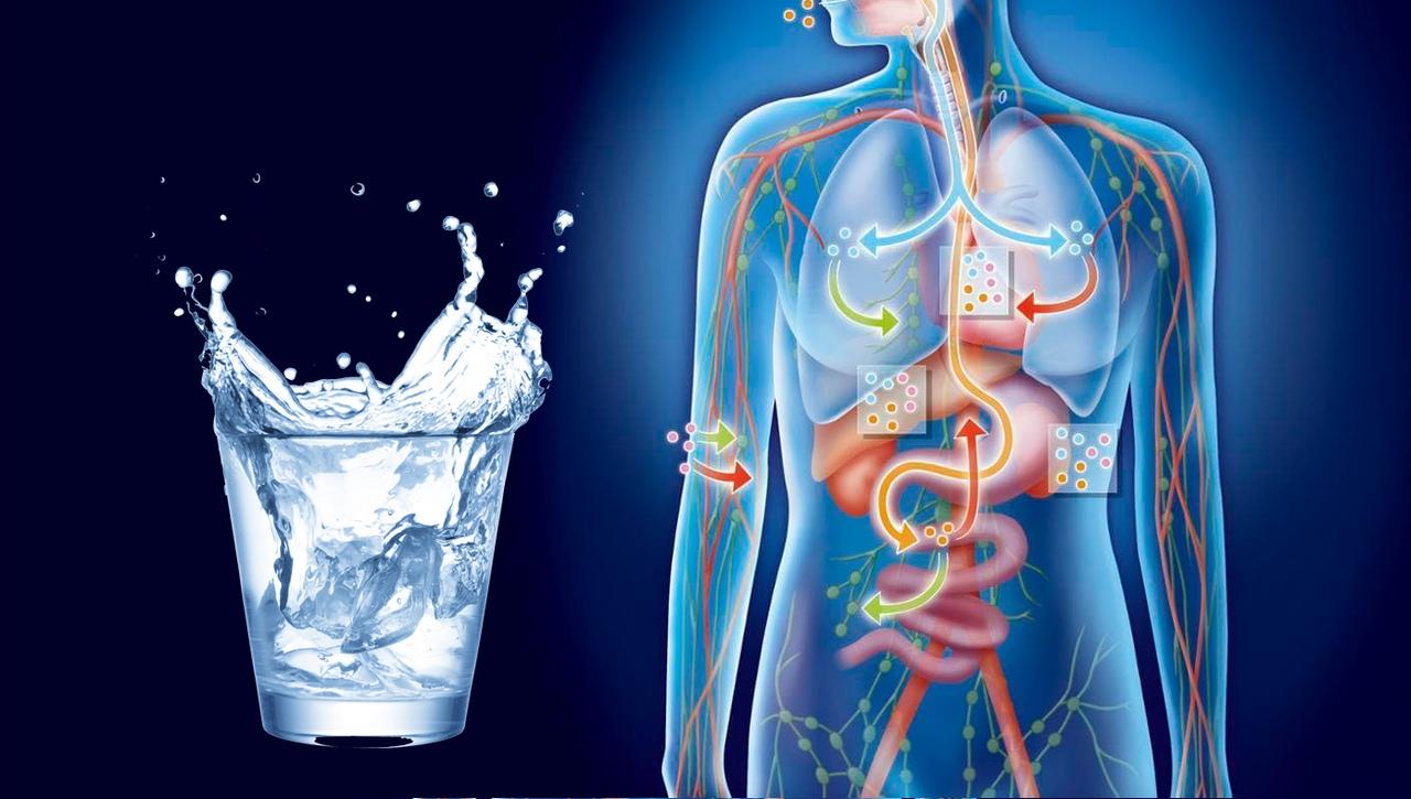 Полная очистка организма – очищение всех органов и систем