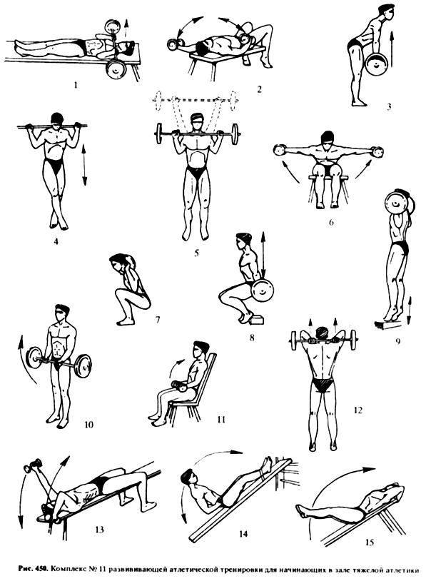 Нестареющая атлетическая гимнастика