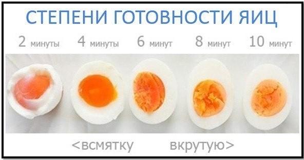 Яичный протеин: плюсы и минусы, отличие от сывороточного и топ 5 порошков альбумина