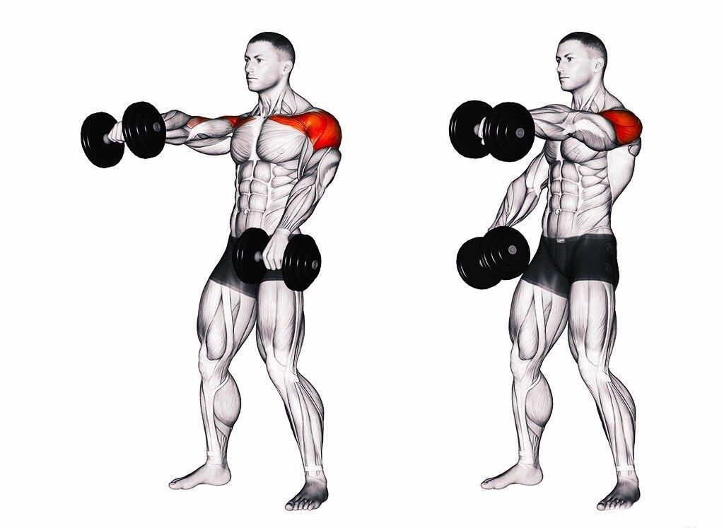 Как быстро накачать плечи?