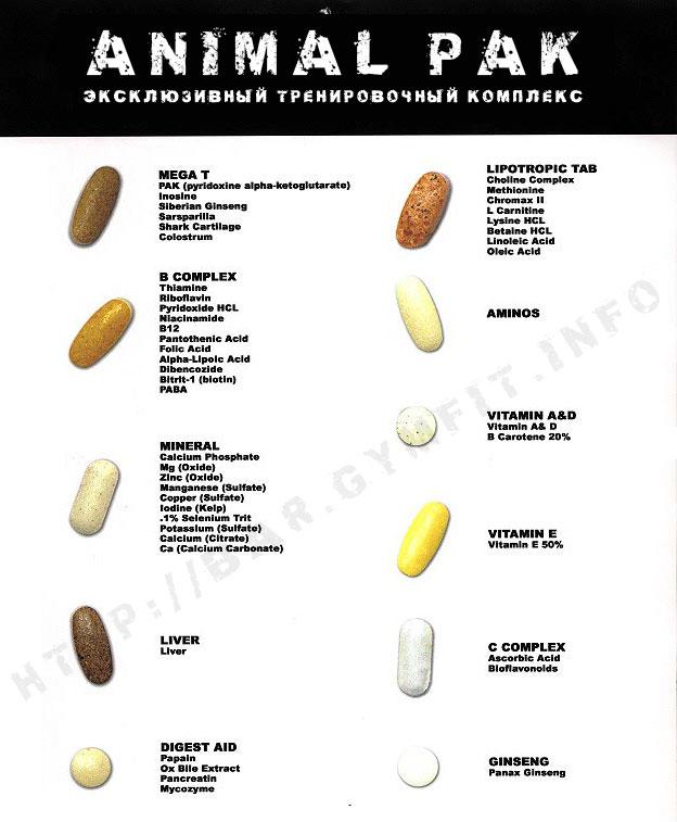 Обзор минерально-витаминного комплекса animal pak от universal nutrition