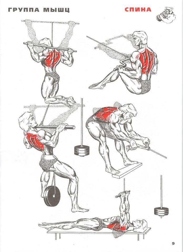 Действенные упражнения на спину для женщин в домашних условиях