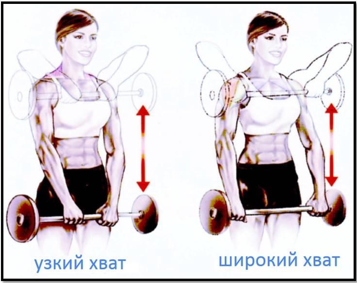 Тяга штанги к подбородку – особенности и техника узким и широким хватом
