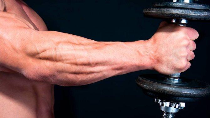Как увеличить размер запястья руки. как правильно качать кисти рук – простые и эффективные упражнения. выполняйте силовые упражнения