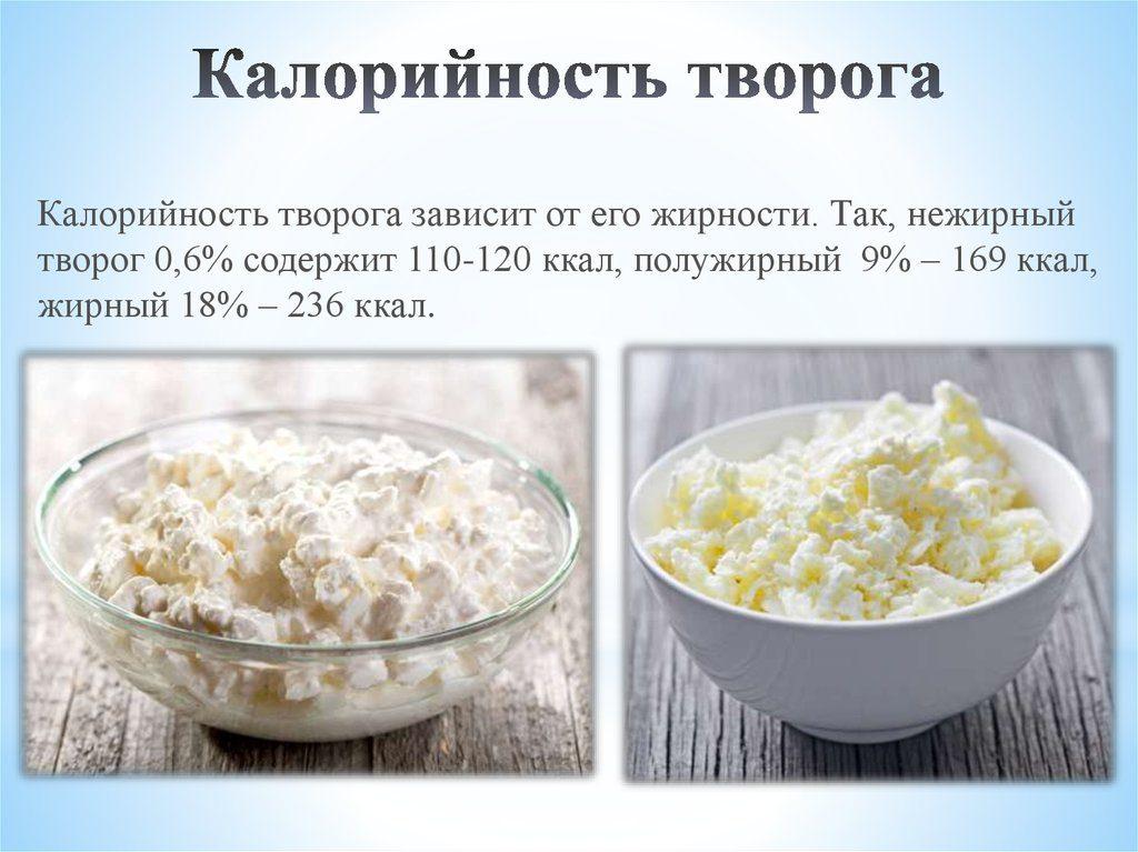Польза и вред творога для организма, состав, калорийность