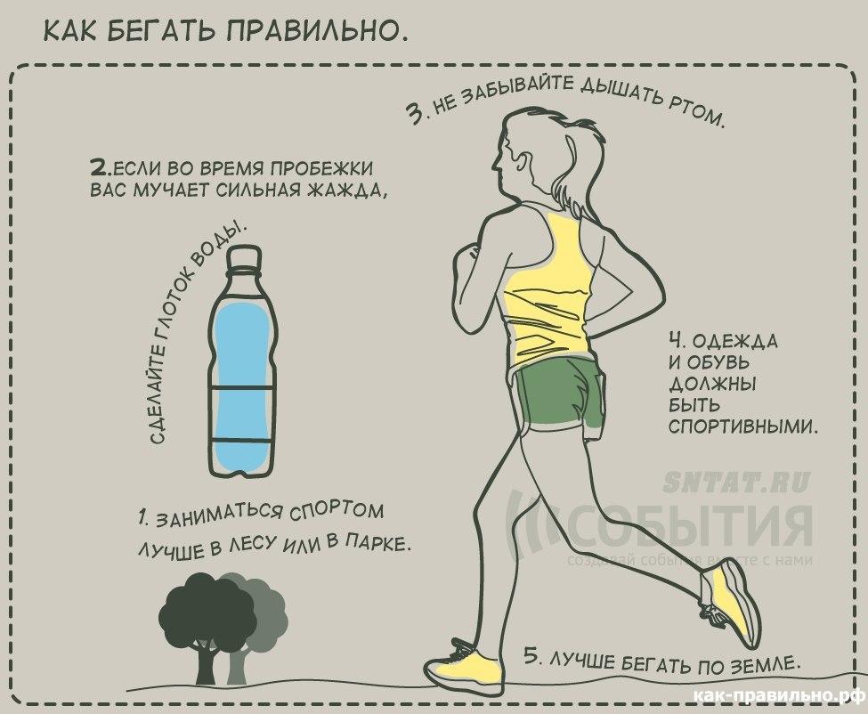 В какое время суток (утром или вечером) лучше заниматься спортом и физическими упражнениями для похудения и чтобы накачать мышцы
