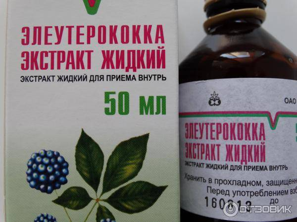 Как принимать жидкий элеутерококк – древний эликсир бодрости