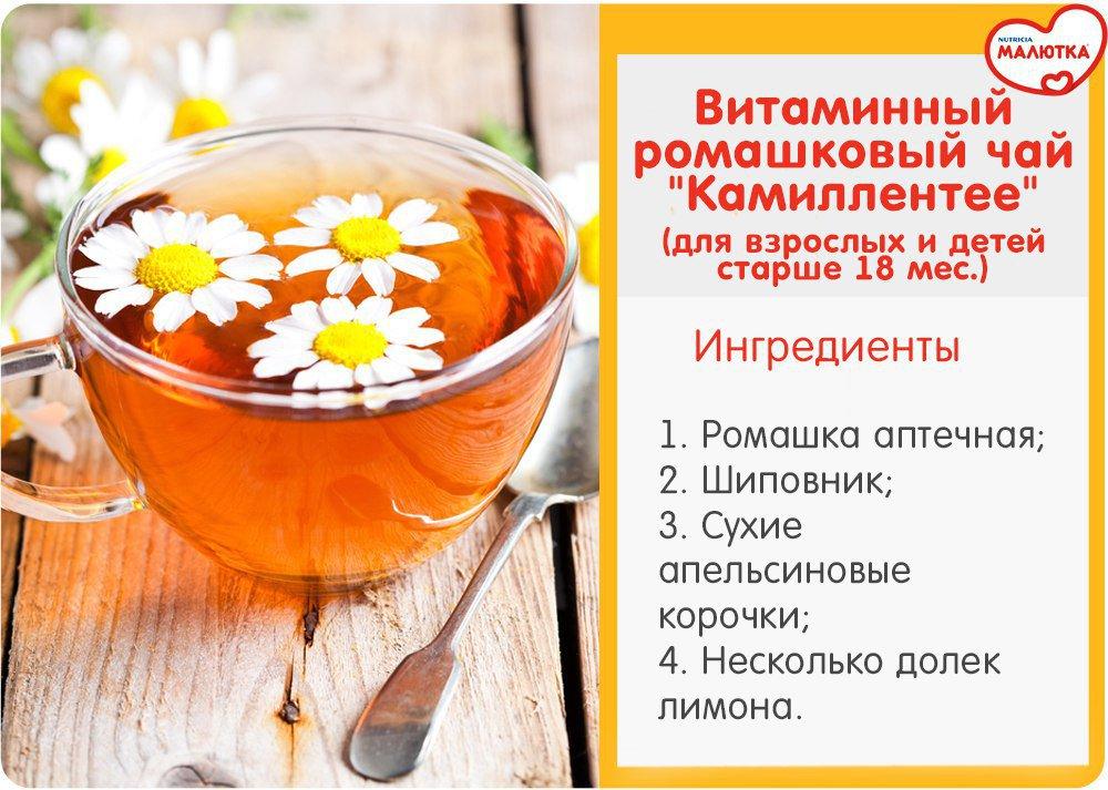 Польза и вред ромашкового чая и все что следует знать