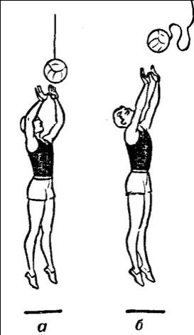 Как научиться высоко прыгать? как высоко прыгать в баскетболе