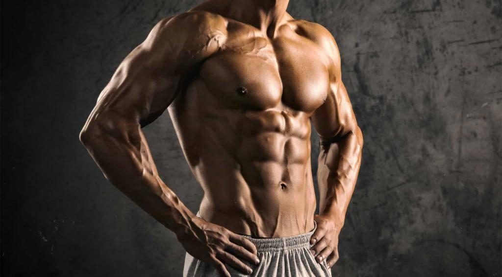 Какое спортивное питание для сжигания жира лучше: жиросжигатели, подавители аппетита, термодженики или заменители пищи