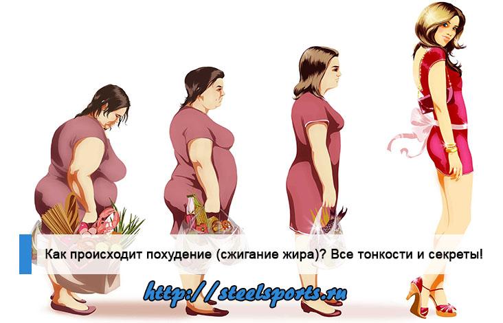 Как происходит похудение?
