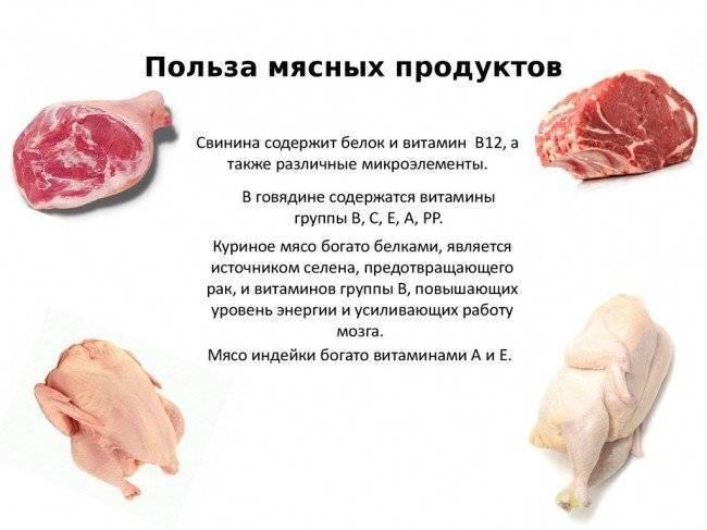 Вред мяса для организма человека: 6 мифов об опасности мяса для здоровья человека