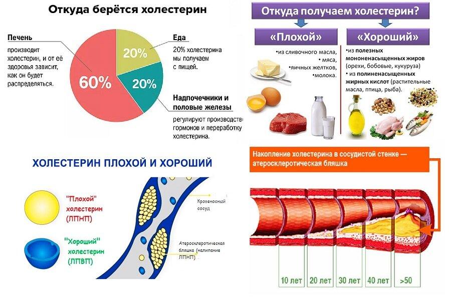 Продукты снижающие холестерин в крови, рекомендуемый перечень пищи,  меню и таблица, видео