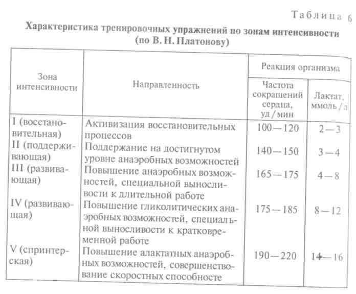 Интенсивность тренировок: все, что нужно знать каждому спортсмену - skiteamrussiaskiteamrussia