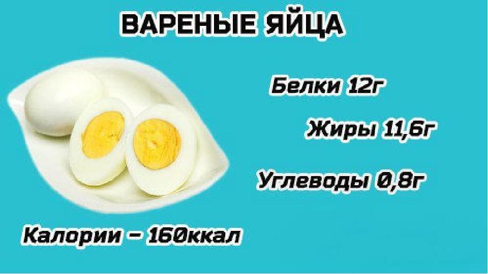 Сколько калорий в одном яйце – курином и перепелином, жареном и вареном