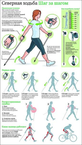 Скандинавская ходьба для начинающих, учимся заниматься правильно