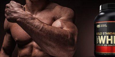 Что такое протеин и как правильно принимать его для набора веса