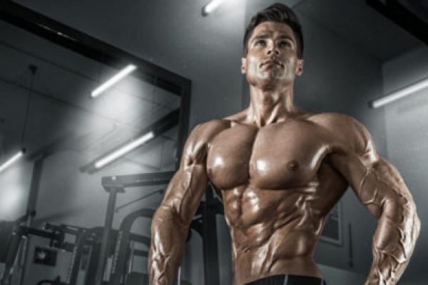 Программа тренировок дениса гусева. тренировка спины, груди и рук