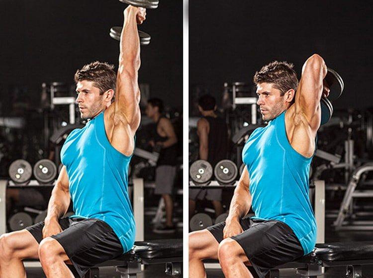 Тренировка трицепса в тренажерном зале - лучшие упражнения