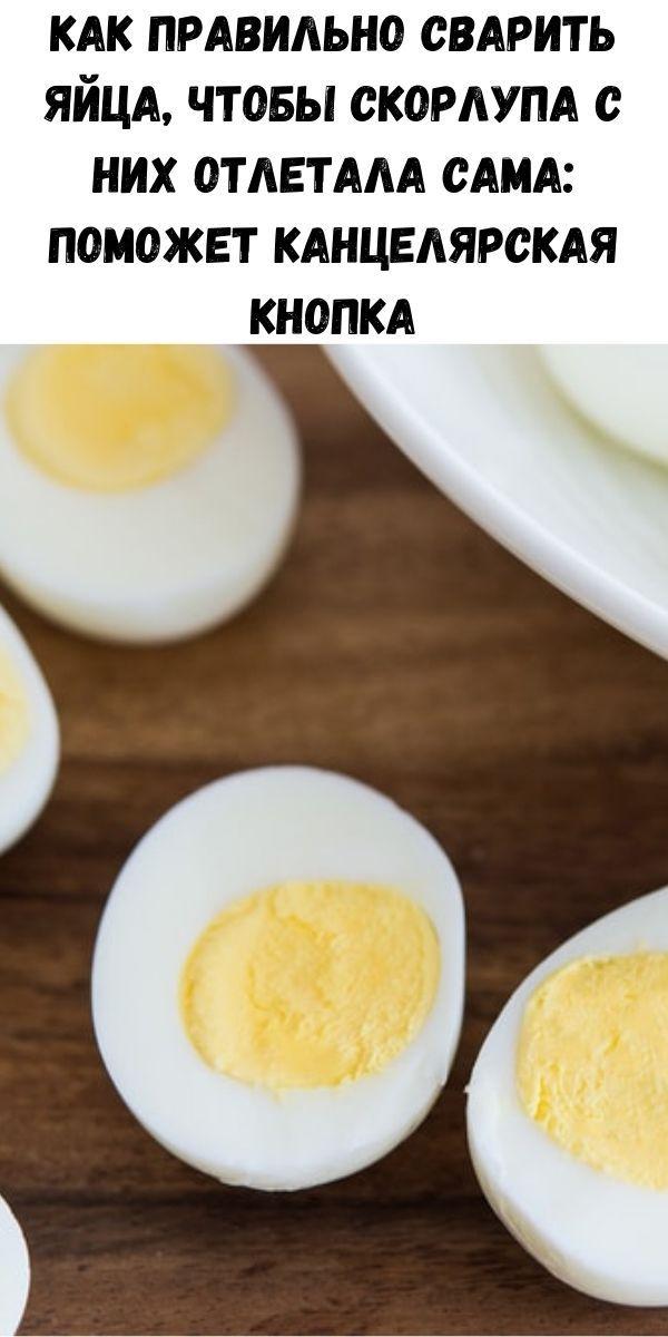 Как приготовить яйца – простые и быстрые способы | дачная кухня (огород.ru)