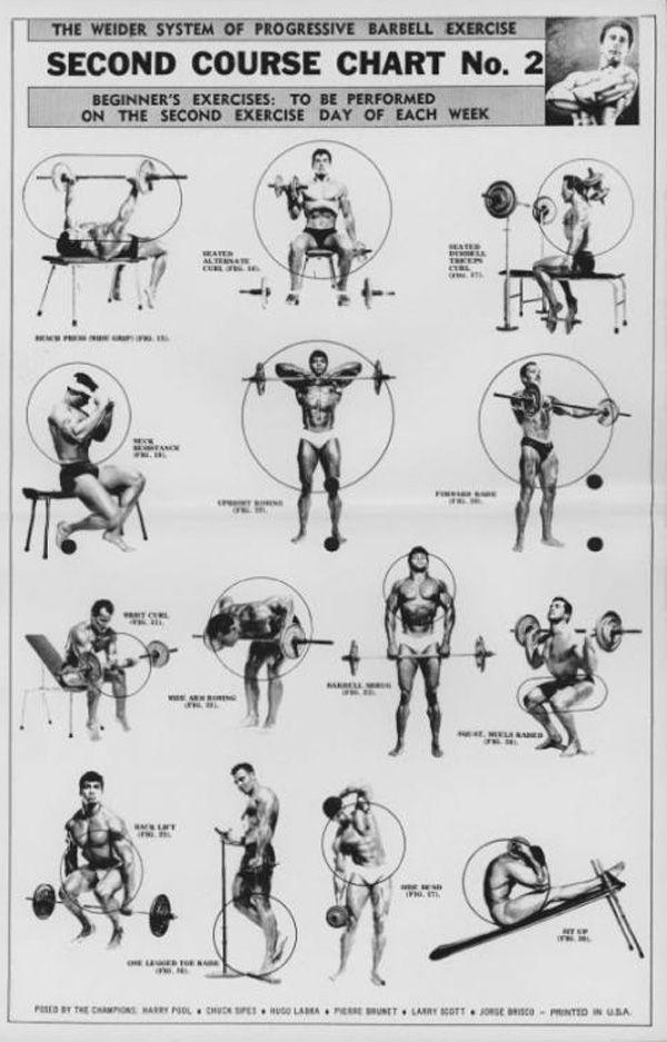Упражнения в домашних условиях: комплекс на все группы мышц