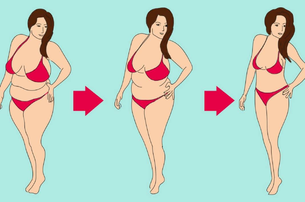 Идеальная женская фигура: пропорции и критерии красоты