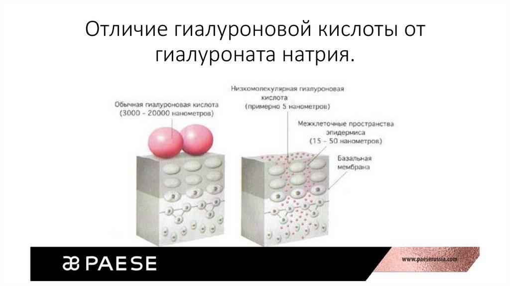 Гиалуроновая кислота: применение, свойства, эффект и противопоказания